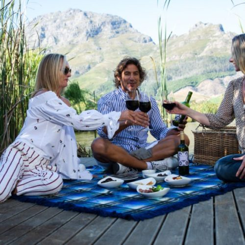 friends having a picnic in the Cape Winelands